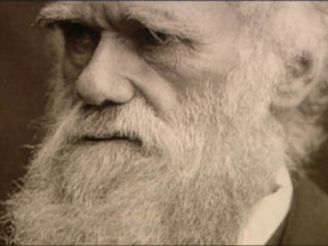 Post-Darwinism: The New, New Synthesis